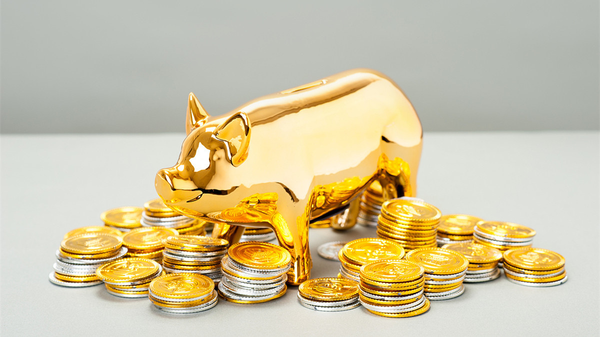 广西一头猪卖9128元,金猪时代来临,八月猪价或将进一步上涨