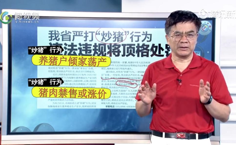 """海南:我省严打""""炒猪""""行为,违法违规将顶格处罚"""