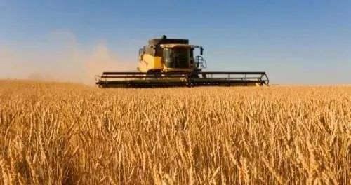 中国相关企业暂停采购美国农产品,美股市值单日蒸发超7000亿美元