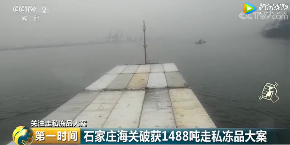 石家庄海关1488吨走私冻品被查处 腐烂变质、疾病传染