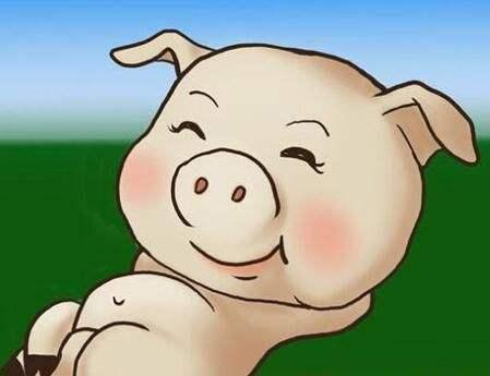 8月10日全国生猪价格呈增长趋势,广东突破13元,猪价何时封顶?