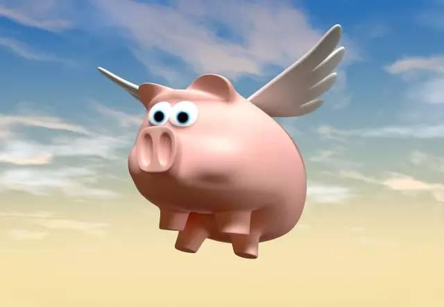 8月12日全国生猪价格持续上涨,将迎来养猪高利润时代?
