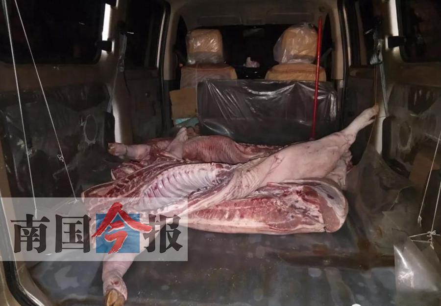 一名男子拿不出检疫合格证 白板猪肉被没收并销毁
