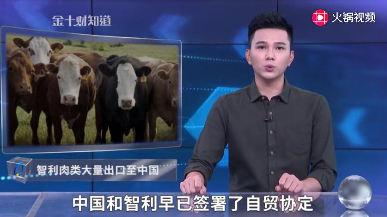中国停购加拿大猪肉后,智利肉类质量优良!中国成其最大肉类市场