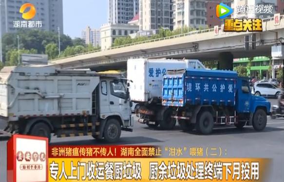 湖南长沙:全面禁用餐厨垃圾喂猪 执法捣毁潲水油炼制窝点