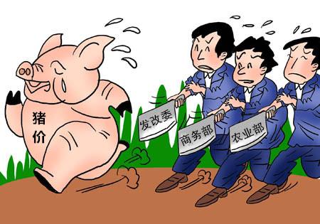 猪价突破历史高点猪肉股却跪了,机构:猪周期的上涨阶段只走完了上半场