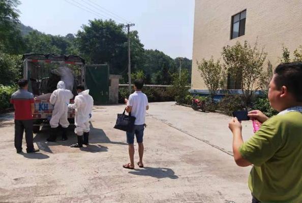 """斗笠山镇依法处置一起违法调运生猪案 保障人民群众""""舌尖""""上的安全"""
