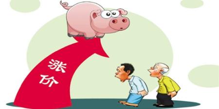 猪肉价格节节攀高!网友:现在去养猪来得及吗?