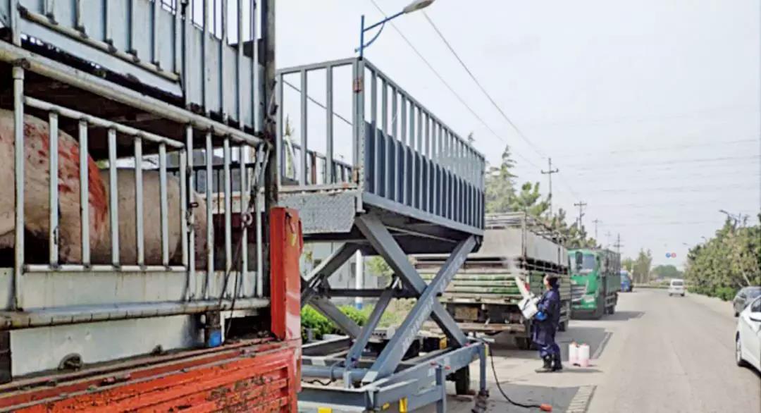 猪场内外六大运动路线,打造猪场的铜墙铁壁!