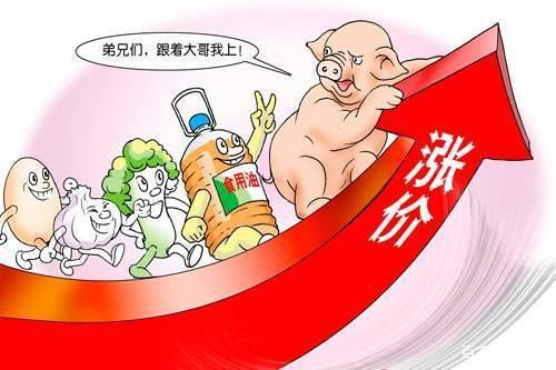8月中旬哈尔滨生猪、猪肉价格创历史新高