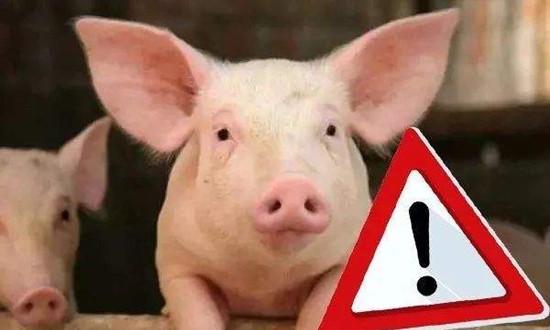 非洲猪瘟无药可治,不代表无药可防!