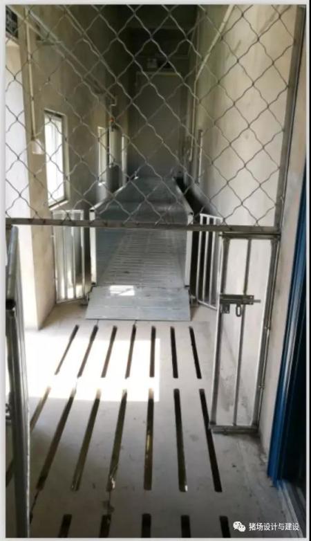 下图显示三层吊桥出猪台的灰区与脏区的洞口