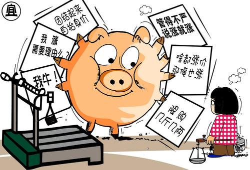 山东嘉祥:多重因素导致猪肉价格急剧上涨