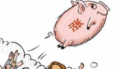 2019年08月24日全国各省生猪价格外三元价格报价