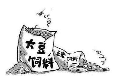 2019年08月25日全国各省豆粕价格表及行情走势报价