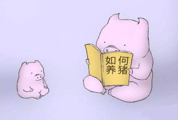 现在养一头猪能赚1400元,未来全国均价能否突破26元/公斤?