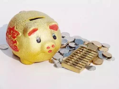 """猪价上涨,农民工可回家养猪了?专家提醒:请警惕""""两高"""""""