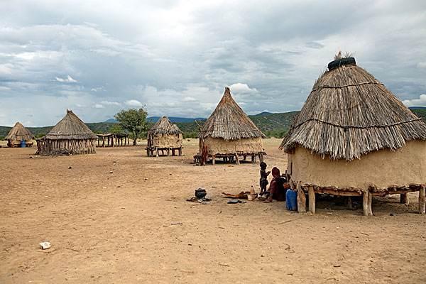 非洲猪瘟疫情最新信息,津巴布韦发生非洲猪瘟疫情,疫情源头不确定