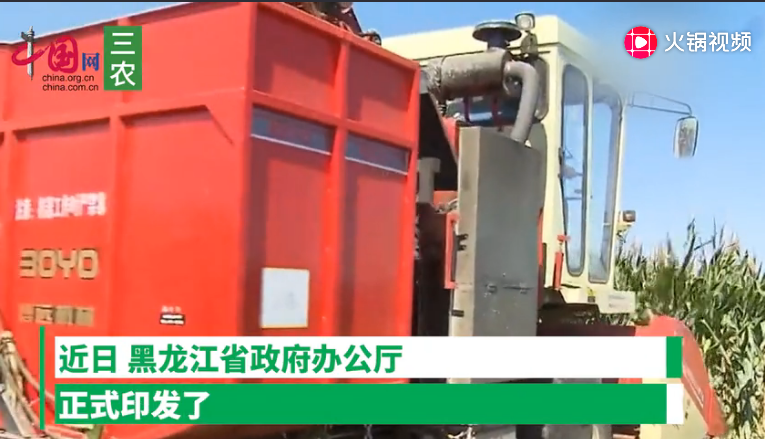 补贴提高!黑龙江省玉米、大豆、水稻补贴即将发放