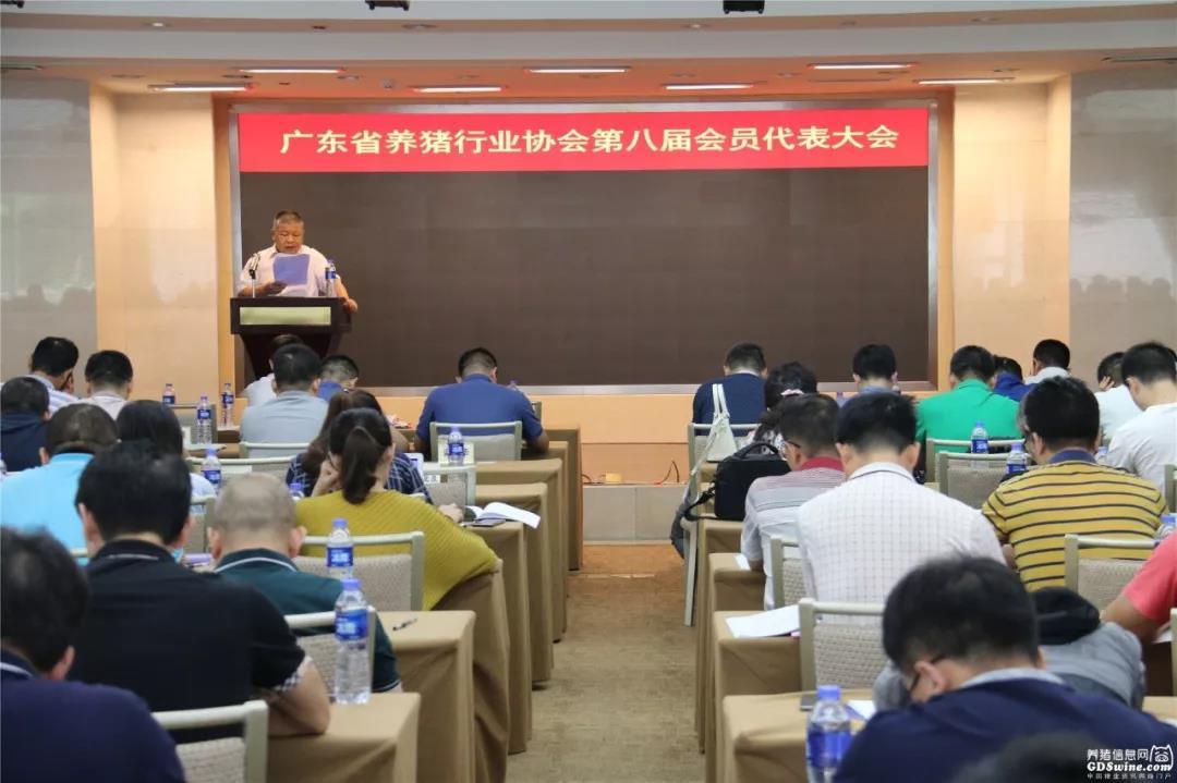 广东省养猪行业协会第八届会员代表大会新任会长:对恢复生猪生产,要有信心