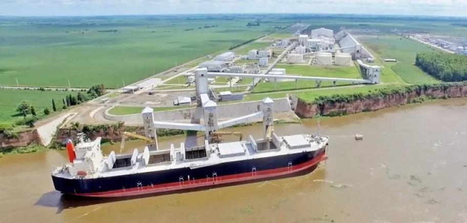 中国大豆六成靠进口,巴西两月提价70%,如何破局?