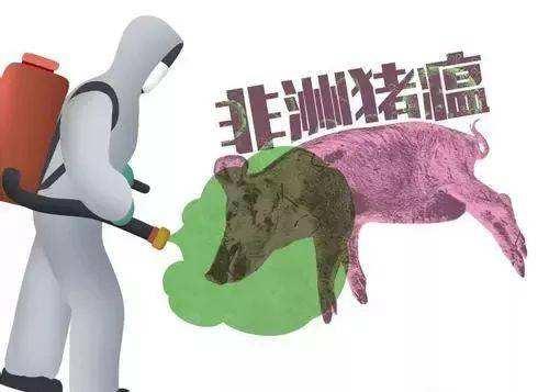 养猪场复养之际,非瘟这些血淋淋的事实你要清楚明白