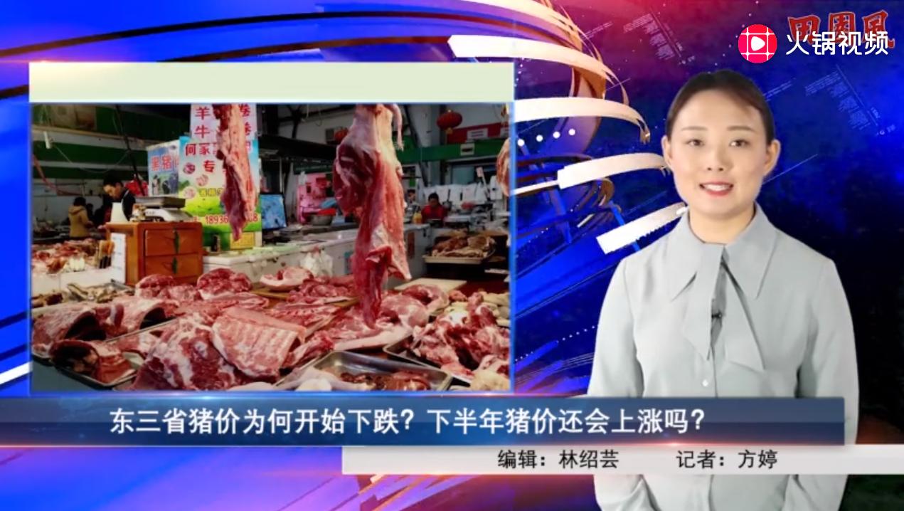 东三省猪价为何开始下跌?下半年猪价还会上涨吗?
