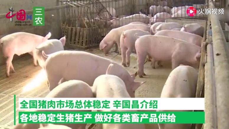 猪肉价格上涨与经贸摩擦无关 预计明年生猪生产将逐步恢复