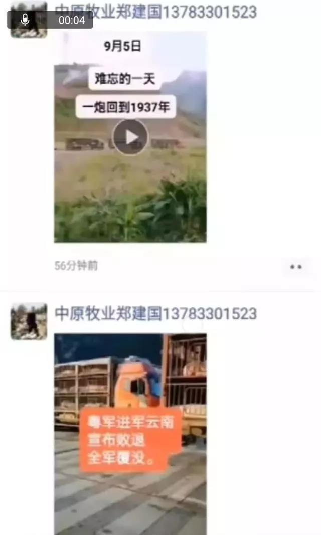 炒猪团宣称要进军云南