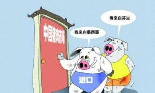 前8个月猪肉进口暴增66%,把全球猪肉都进口依然无法填补缺口