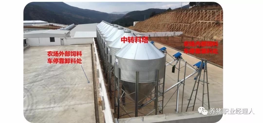 发生过非洲猪瘟养殖场恢复生产技术指南(连载四),完善各项生产管理制度
