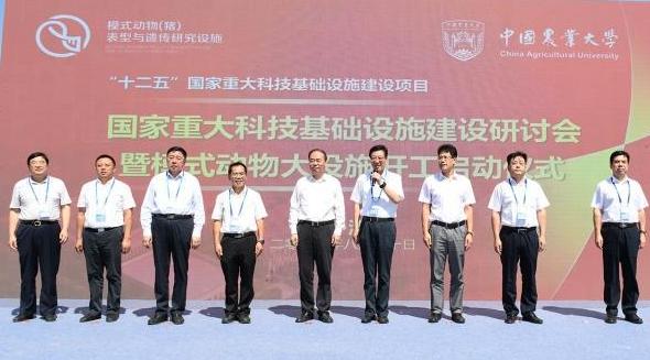 """中国农大""""猪设施""""正式开工,系世界首个将猪做成模式动物研究设施"""