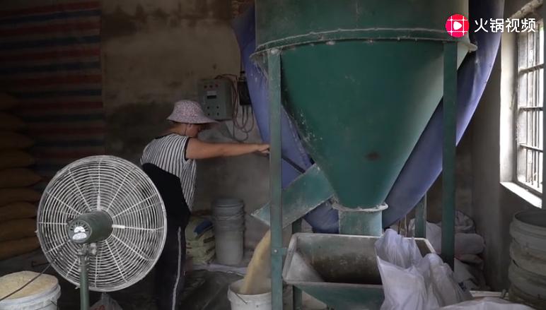 农村女子养一百多头猪,每天需要打上千斤饲料,今年赚大钱了