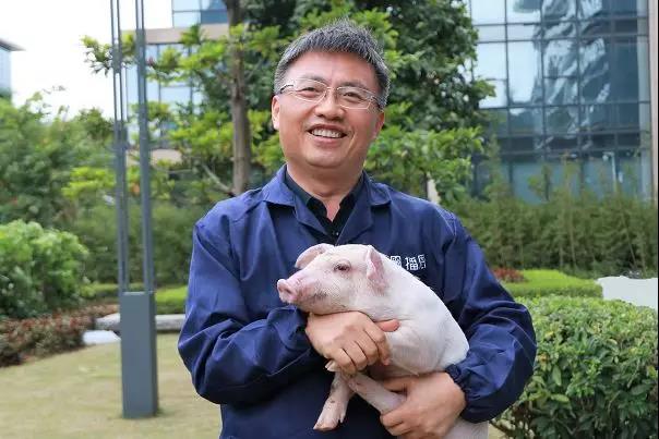 重磅:未来三年,饲料企业将淘汰60%-70%?!