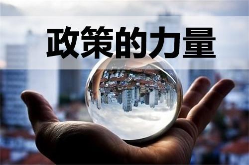 北京市关于屠宰环节病害猪无害化处理补贴的公示