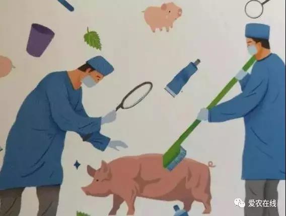猪群混合感染