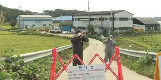 韩国连发两起非洲猪瘟疫情,致猪肉价格上涨超30%