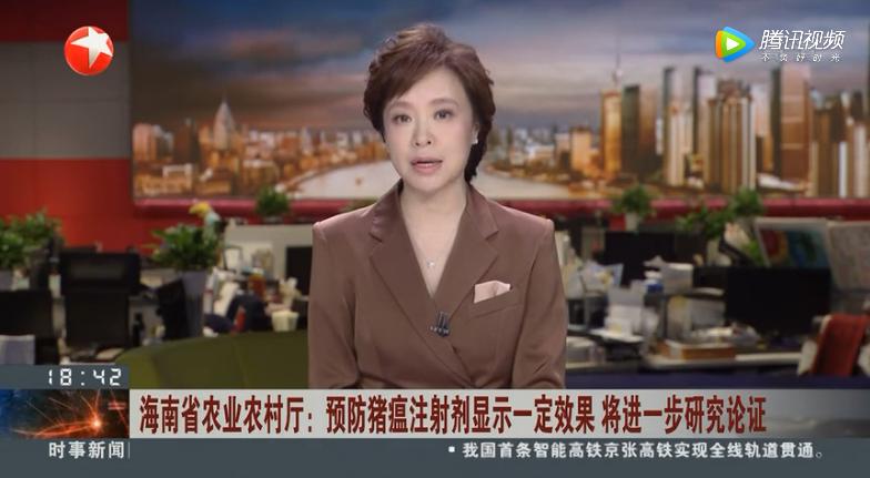 海南省农业农村厅:预防猪瘟注射剂显示一定效果