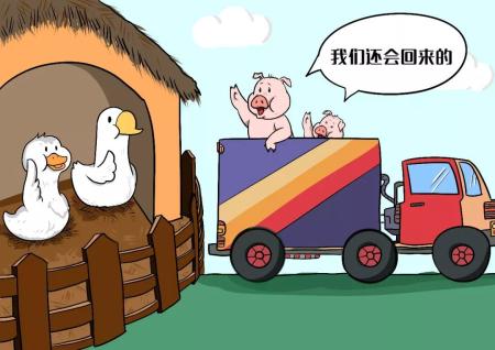 二师兄路在何方复养有多难?生猪养殖业正面临着一场转型大考