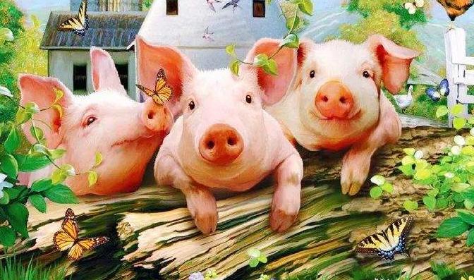 山东8月生猪产业监测预警:生猪产能低价格高,保供稳价形势严峻