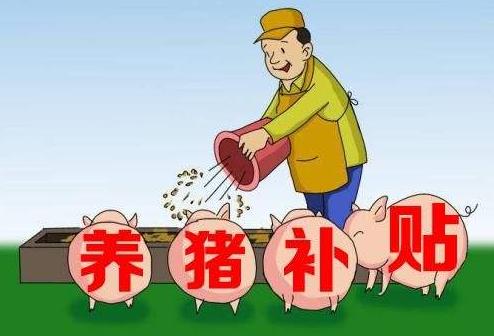 2019养猪新政策频出,这是养殖户最坏的时期也是最好的时期