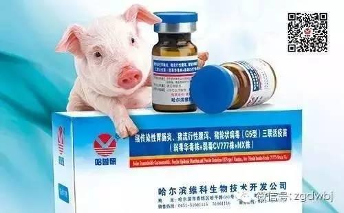 广东省猪急性腹泻综合征冠状病毒(SADS-CoV)流行病学分析