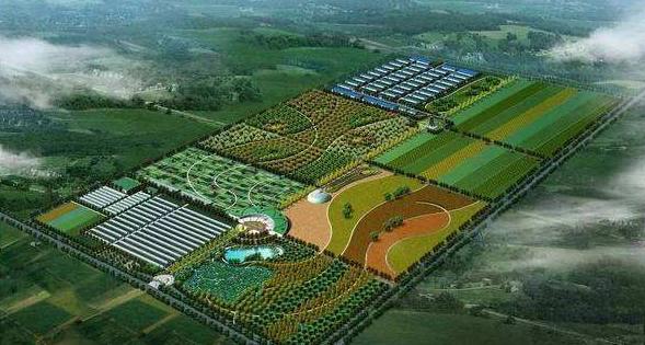 四川9市开工生猪养殖项目,预计明年出栏生猪新增1000万头