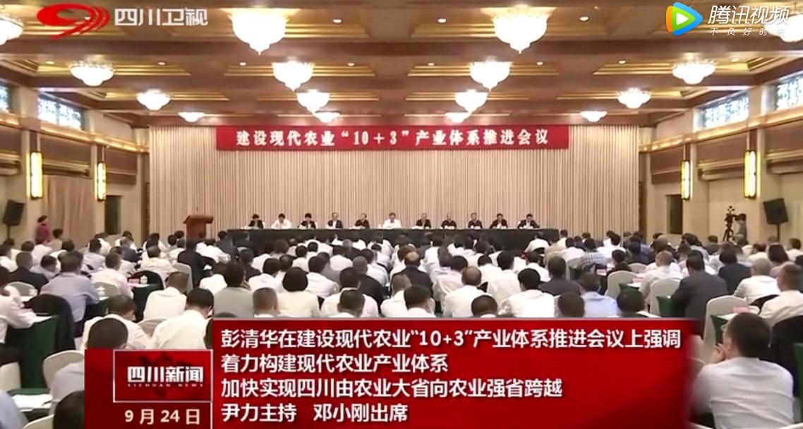 """四川省建设现代农业""""10+3""""产业体系推进会议举行 王德根作为唯一企业代表发言"""