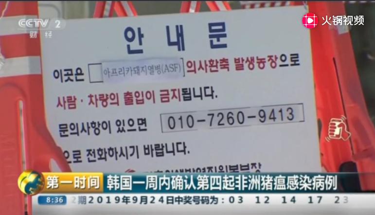 韩国一周内确认第四起非洲猪瘟感染病例