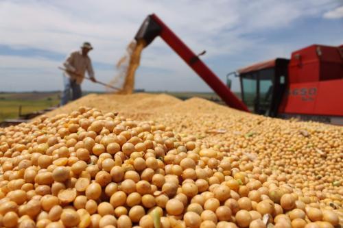 8月份我国大豆进口量创新高,中国对美国大豆进口量呈现增长趋势