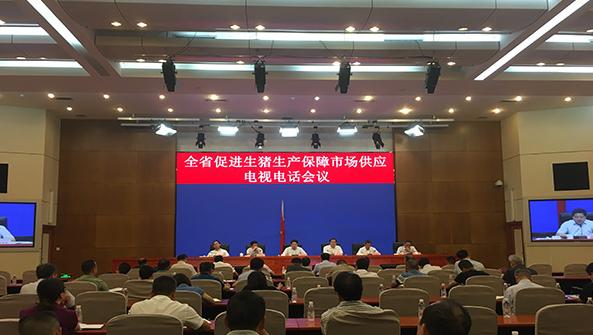 湖南召开促生猪生产保供应电视电话会议,部署保障市场供应工作