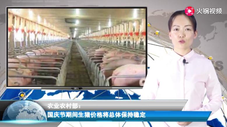 农业农村部:国庆节期间生猪价格将总体保持稳定