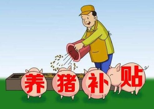 河南省:2019年生猪规模化养殖场建设补助项目申报工作的通知