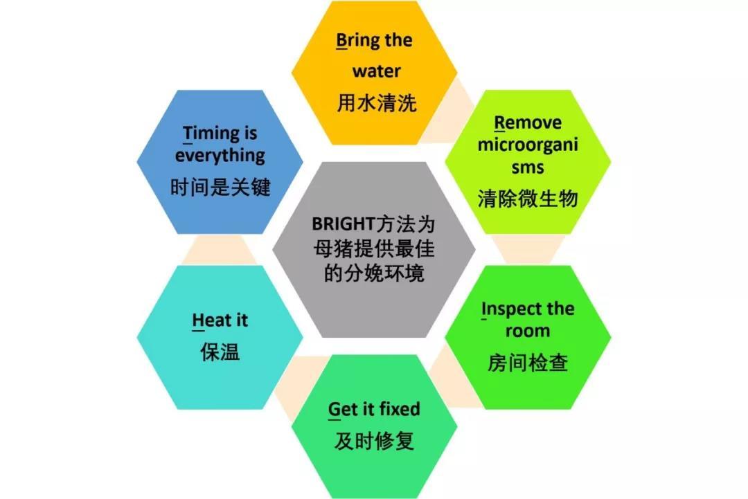 打造最佳产房环境的六大步骤